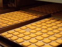 バニラクッキー 焼成後